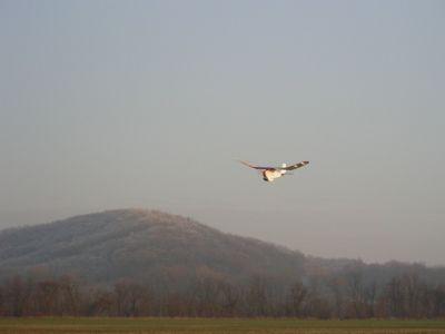 sklabina20061229-2